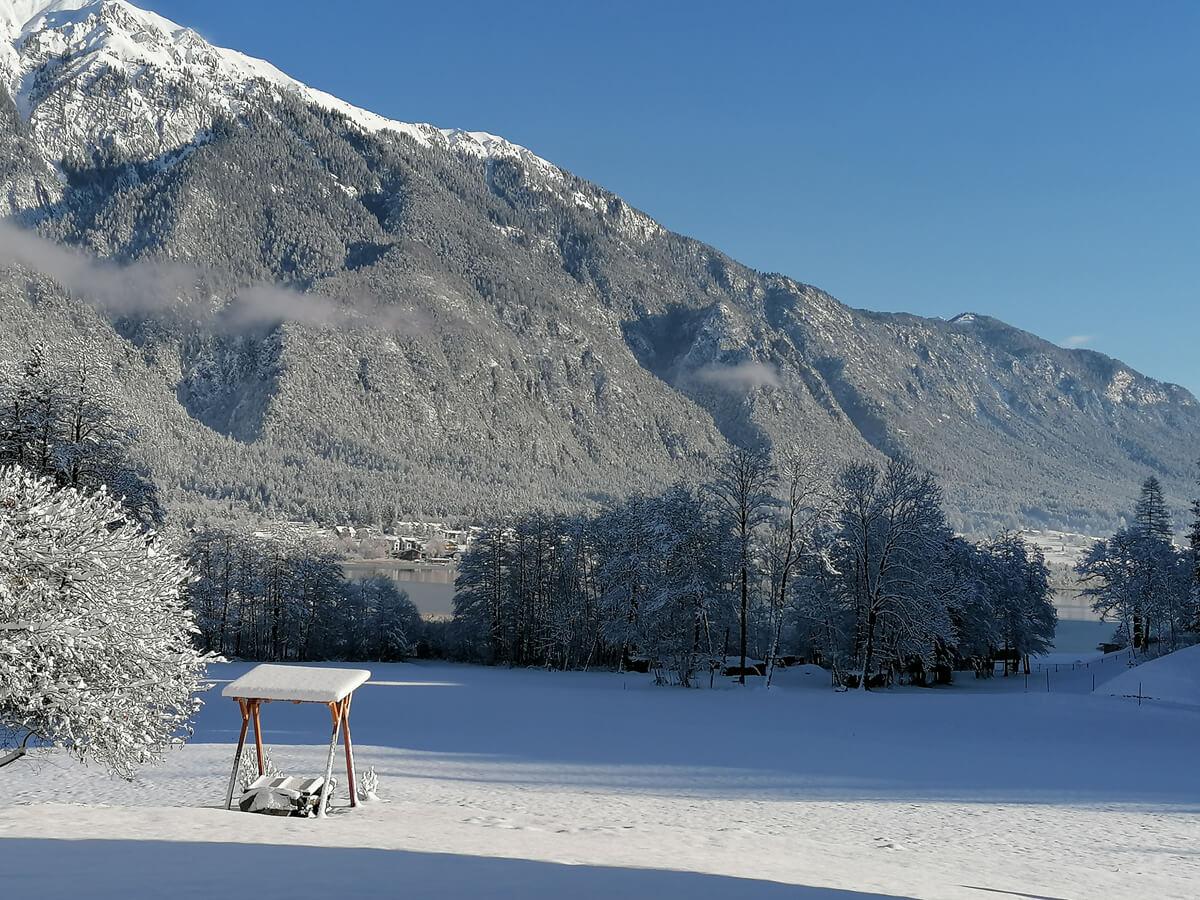 Seeblick Winter